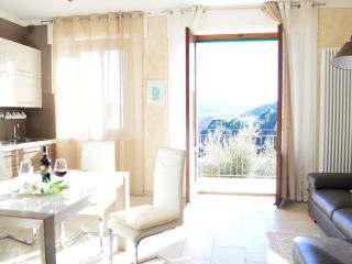 The Beautiful Sun Apartment - Montepulciano vacation rentals
