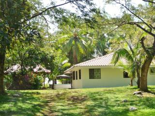 El Pelicano Beach House - Free WIFI - Manuel Antonio National Park vacation rentals