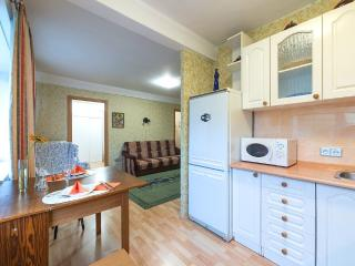 Ideal apartment for a big family - Saint Petersburg vacation rentals