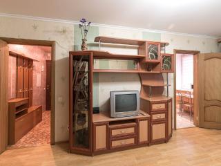 Cozy apartment be the park - Saint Petersburg vacation rentals