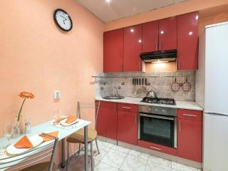 Lovely apartment not far from the center - Saint Petersburg vacation rentals