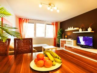Apartment Vienna De Luxe - April PROMO - Vienna vacation rentals
