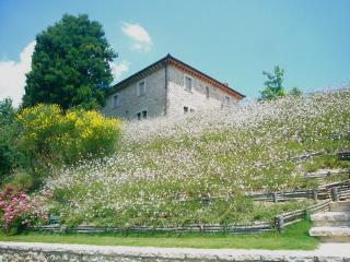 Charming Villa with Internet Access and A/C - Todi vacation rentals