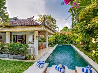 Lush Tropical Garden 3 bedroom Villa in Oberoi - Seminyak vacation rentals
