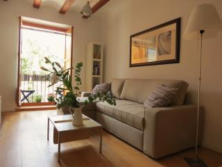Quiet & renewed apartment in historic centre - Valencia vacation rentals