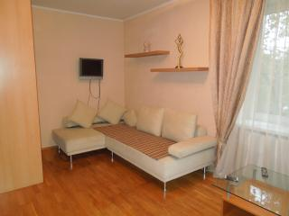 Cute studio apartment on the streets of Minsk - Moscow vacation rentals