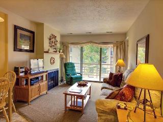 2BR/2BA Beautiful & Sunny Mountain Condo, Park City, Sleeps 6 - Park City vacation rentals