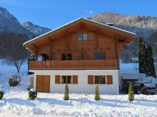 Spacious Chalet with Internet Access and Satellite Or Cable TV - Vacheresse vacation rentals