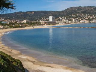 Apt ,Cote D'Azur 5, La Faviere, Bormes les Mimosas - Bormes-Les-Mimosas vacation rentals