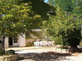 Gite 4 à 10 personnes dans la campagne tarnaise - Labruguiere vacation rentals