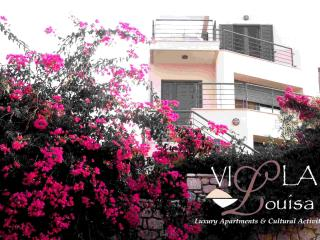 Beautiful Villa with A/C and Television in Xifias - Xifias vacation rentals