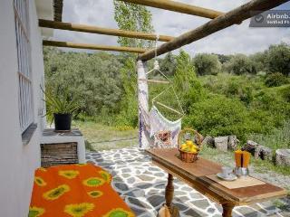 Casa Iris with pool - peaceful and healing - Lanjaron vacation rentals