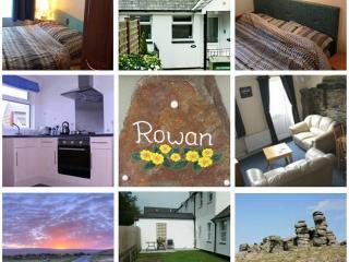 Rowan Cottage, Higher Longford - Tavistock vacation rentals