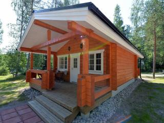 Cozy Cottage with Internet Access and Central Heating - Pertunmaa vacation rentals