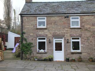 A Cosy 2 bedroom cottage for couples and families - Llangynidr vacation rentals