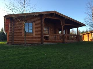 Lovely Cabin with Deck and Internet Access - Felton vacation rentals