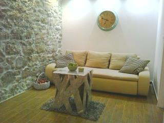 Nice Condo with Internet Access and Paper Towels Provided - Sutomiscica vacation rentals