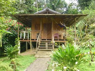 Nice House with Internet Access and Private Outdoor Pool - San Miguel de los Bancos vacation rentals