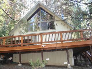 Chalet Cabin at Pine Mountain Lake - Groveland vacation rentals