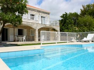 Villa with pool for up to 12 person - Cilipi vacation rentals