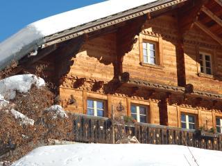 6 bedroom Ski chalet with Internet Access in Les Diablerets - Les Diablerets vacation rentals