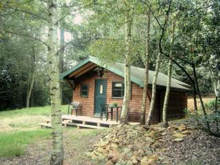 Wonderful 1 bedroom Lodge in Shere - Shere vacation rentals