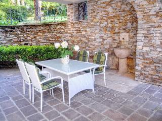 Apartment with nice arcade & luxuriant garden - Stresa vacation rentals
