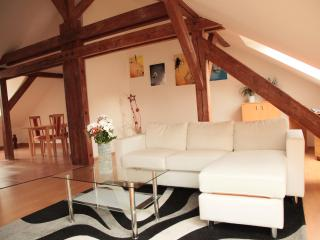 Luxurious Bravo Apartment 01 - Prague vacation rentals