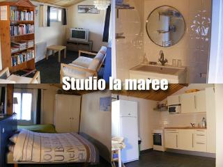 Nice Studio with Internet Access and Wireless Internet - Beauvoir-Sur-Mer vacation rentals