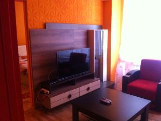A Beautiful Apartment at City Centre - Ankara vacation rentals
