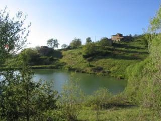 Balz Tuscan farmholiday Chianti - Radda in Chianti vacation rentals