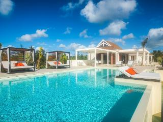 TURTLE NEST... step down to the soft white sand of Baie Longue beach from this contemporary villa... Aahhh... - Baie Rouge vacation rentals