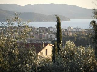 Villa Palmira - Follonica vacation rentals