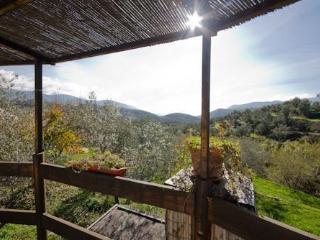 Enchanting Yurt with pool in Alpujarras - Lanjaron vacation rentals