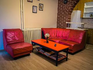 SAN apartment - downtown Belgrade - Belgrade vacation rentals