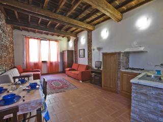 Iris nearby Uffizi Gallery - Florence vacation rentals