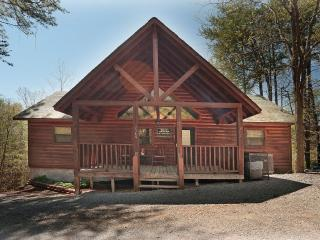 Luxury Cabin/2 Masters w/Whirlpools/HotTub+More - Sevierville vacation rentals