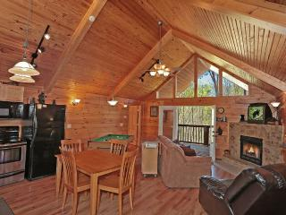 Cabin w/2 luxury masters w/whirlpools+hot tub - Sevierville vacation rentals