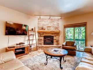 Appealing Breckenridge 2 Bedroom Walk to lift - ALA22 - Breckenridge vacation rentals