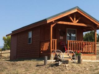 "Wilderness Spirit Cabins LLC- the ""Wolf Den"" - Corvallis vacation rentals"