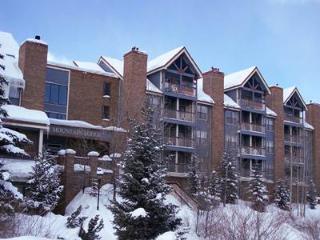 Charming Ski In 1 Bedroom Condo - RML E 307 - Summit County Colorado vacation rentals