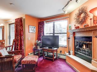 Comfortably Furnished  2 Bedroom  - 1243-21366 - Breckenridge vacation rentals