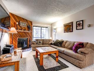 Lovely  2 Bedroom  - ********** - Breckenridge vacation rentals