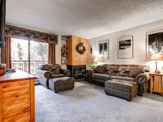 Economically Priced  1 Bedroom  - 1243-62442 - Breckenridge vacation rentals