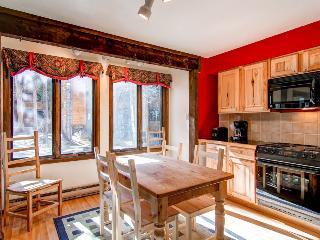 Lovely  1 Bedroom  - 1243-47748 - Breckenridge vacation rentals