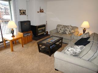 Appealing  2 Bedroom  - 1243-47785 - Breckenridge vacation rentals