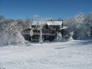 Gorgeous 7 bedroom House in Beech Mountain - Beech Mountain vacation rentals