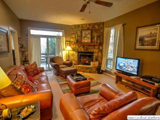 2BR Cozy Condo at Yonahlossee, Near Blowing Rock & Boone!, Wood Burning Fireplace, Flat Screen TV, Fully-Stocked Kitchen, Main Level Master, Club Privileges - Boone vacation rentals
