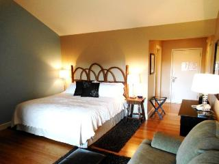 1BR Charming Inn Room at Yohahlassee Resort, Convenient Location Near Downtown - Boone vacation rentals