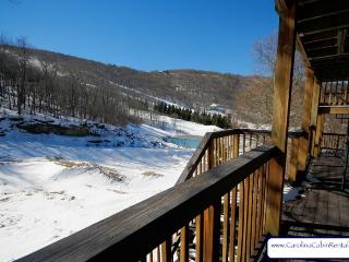 3BR Ski Villa just off Powder Bowl Terrain Park on Beech Mountain, Great Views, Easy Walk to the Slopes - Beech Mountain vacation rentals